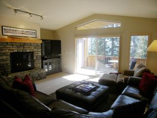 Perfect Chalet with Internet Access and Garage - Incline Village vacation rentals
