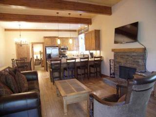 Nice 4 bedroom Apartment in Incline Village - Incline Village vacation rentals