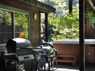 Romantic House with Internet Access and Telephone - Cazadero vacation rentals