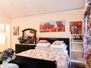Big studio with a queen bed. New build August 2013 - Chicago vacation rentals