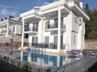 The Retreat Villa - Oludeniz vacation rentals