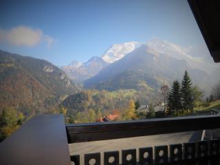 """Appartement """"Le Nidamis"""" face au Mont Blanc - Saint-Nicolas-de-Veroce vacation rentals"""