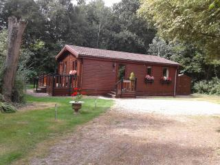 Alderwood Lodges, Burnside Lodge - Diss vacation rentals