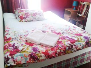 A private double room with WiFi - Dublin vacation rentals