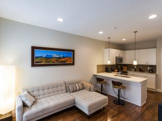 Closest vacation rental to the Broncos Stadium! - Denver vacation rentals