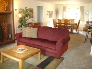 Nice Condo with Internet Access and Television - Osage Beach vacation rentals