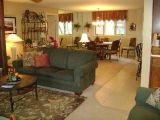 Nice 3 bedroom Osage Beach Apartment with Internet Access - Osage Beach vacation rentals