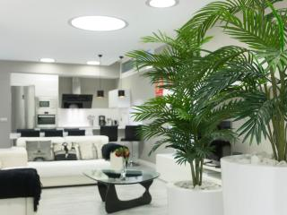 Luxury apartment 150 meters from the beach. - San Sebastian - Donostia vacation rentals