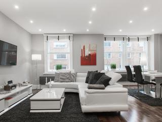 THE ELEMENTS!*CEO STYLE* DeLUXE* 3bed/3bath*QUIET* - London vacation rentals