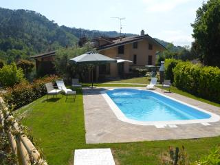 Bright 4 bedroom House in San Martino in Freddana - San Martino in Freddana vacation rentals