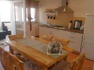 Cozy 2 bedroom Apartment in Sv. Filip i Jakov - Sv. Filip i Jakov vacation rentals