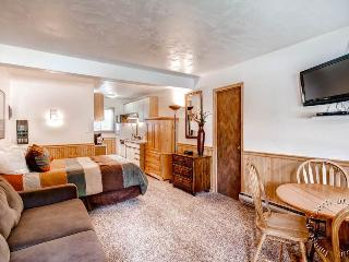 Park Meadows Lodge 3B by Ski Country Resorts - Breckenridge vacation rentals