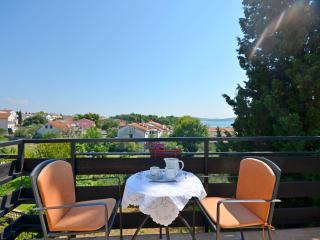 Apartments Branka - 26611-A1 - Vodice vacation rentals