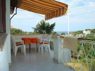 6159 Igor(4) - Murter - Murter vacation rentals