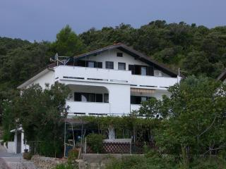8120  SA3(2+1) - Supetarska Draga - Supetarska Draga vacation rentals