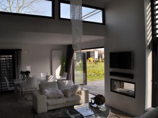 Luxurious villa 15 km of Amsterdam centre + beach - Halfweg vacation rentals