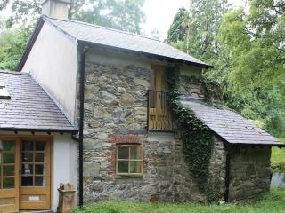 A beautiful renovated Old Stone Mill near Bethesda - Bethesda vacation rentals