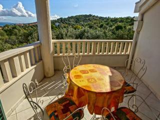 35537 A1(2+2) - Zdrelac - Zdrelac vacation rentals