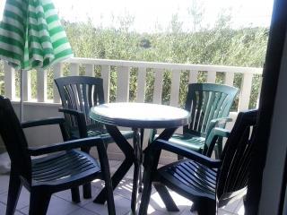 35537 A2(2+2) - Zdrelac - Zdrelac vacation rentals