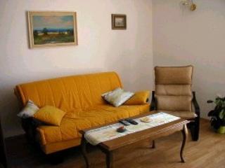 A1(2+2): living room - 3004 A1(2+2) - Banjol - Banjol - rentals