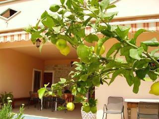 3040 SA3(2) - Bibinje - Bibinje vacation rentals