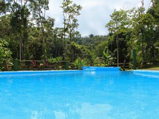 CDCR - Arenal Rain Forest Estate - La Fortuna de San Carlos vacation rentals