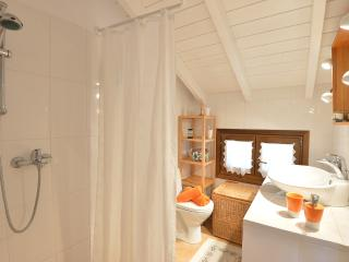 Spacious Villa with Internet Access and Private Outdoor Pool - Gaios vacation rentals