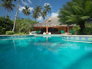 Wonderful Villa 2 Steps from a White Sandy Beach - Las Terrenas vacation rentals