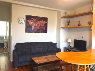 Cozy Condo with Internet Access and Dishwasher - Long Island City vacation rentals