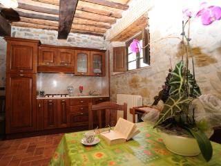 Agriturismo Podere Casenove Appartamento Pino - Citerna vacation rentals