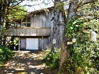 Rustic Charm~Rustic cabin nestled in the trees, only 1/2 block to the beach!! - Manzanita vacation rentals