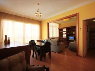 Cozy 2 bedroom Apartment in Rio de Janeiro - Rio de Janeiro vacation rentals
