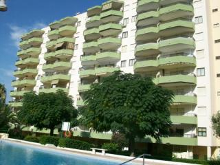 Cozy Apartment with Garden and Iron - Grau de Gandia vacation rentals