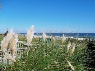 Oceanfront Studio with Awesome Views!! Sleeps 4 - Myrtle Beach vacation rentals