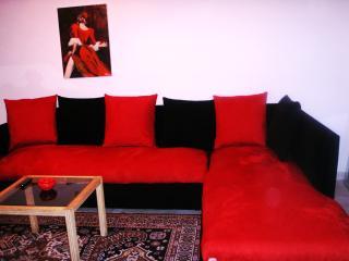agréable et coquet appartement meublé à  la marsa - La Marsa vacation rentals