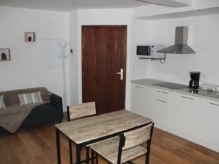 Studio Evian-les-Bains - Évian-les-Bains vacation rentals