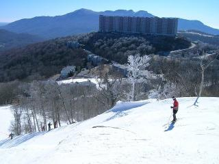 Gorgeous, Must see, Condo for only $80 a night! - Banner Elk vacation rentals