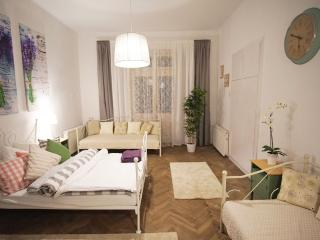 ★ Groups & Families in Center for 6 - Krakow vacation rentals