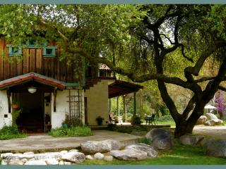 DaVidgil House on the River - Three Rivers vacation rentals