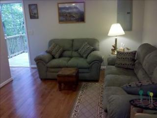 Nice 2 bedroom Cleveland House with Parking Space - Cleveland vacation rentals