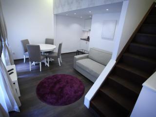 Chain Bridge Apartment - Budapest vacation rentals