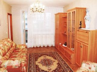 Comfortable 2 bedroom Apartment in Krasnoyarsk - Krasnoyarsk vacation rentals