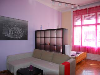 Flower apartment - central, silent, sunny! - Budapest vacation rentals