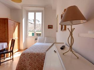 small but cozy apartment - Florence vacation rentals