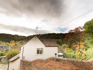 Perfect Cottage with Internet Access and Television - Ironbridge vacation rentals