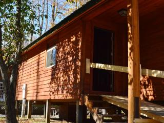 Revelles River Retreat - Little Bear Bunk House - Bowden vacation rentals
