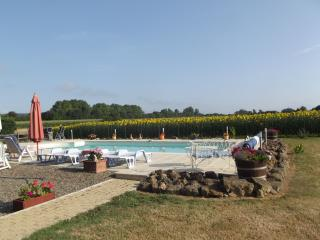 Nice Gite with Internet Access and Satellite Or Cable TV - Maubourguet vacation rentals
