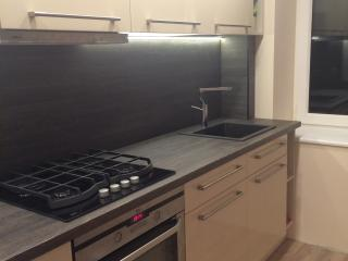 New Modern apartment - Kaunas vacation rentals
