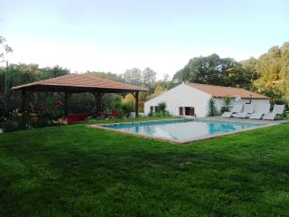 The White House-Casa Branca - Vale da Silva Villas - Aveiro vacation rentals