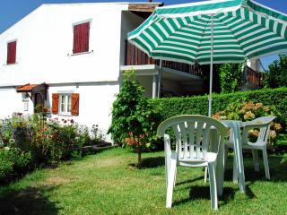 Cozy 2 bedroom House in Seia with Stove - Seia vacation rentals